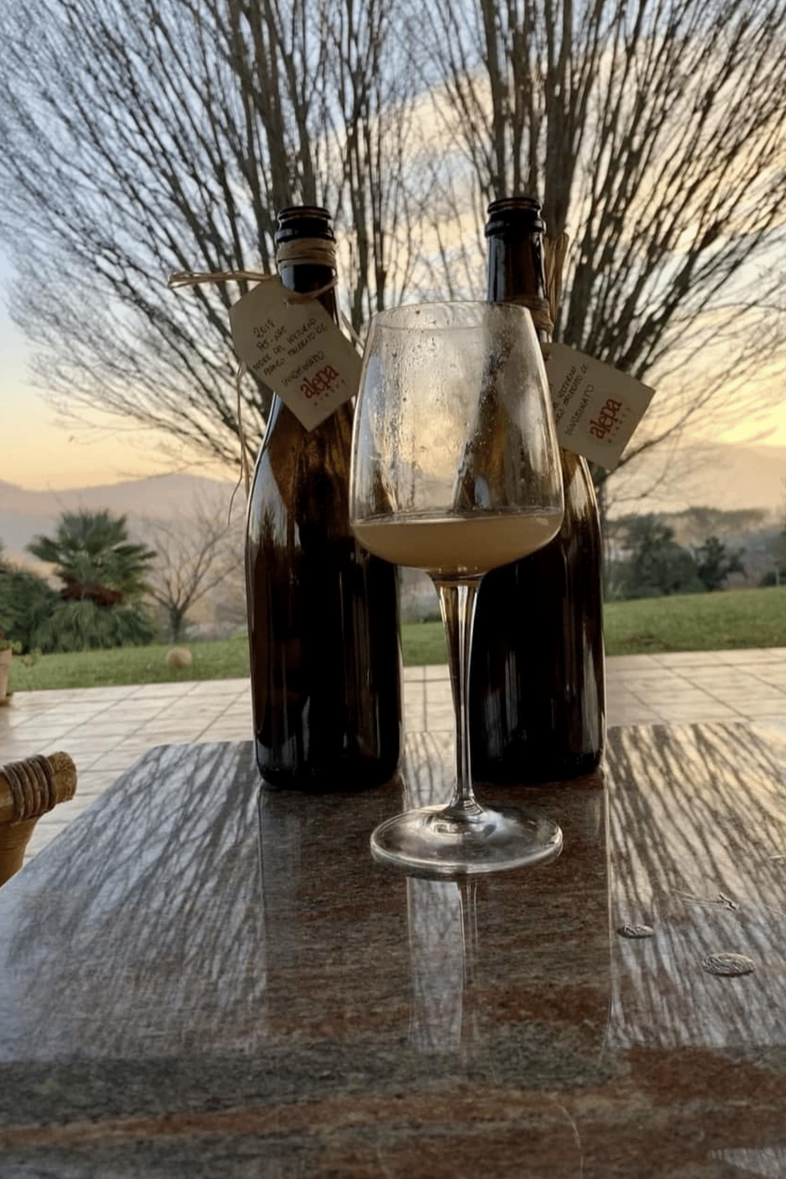 azienda vinicola alepa bicchiere vino